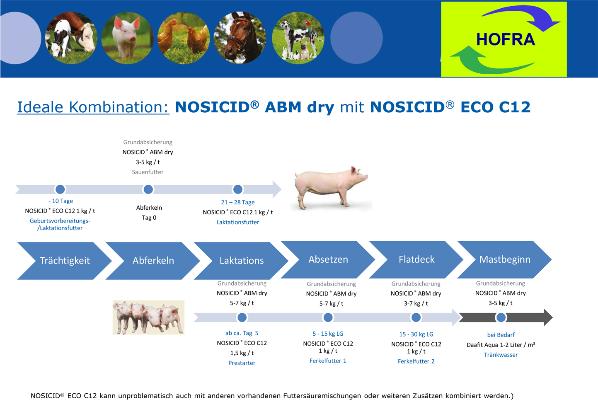 Ideale Kombination: NOSICID® ABM dry mit NOSICID® ECO C12